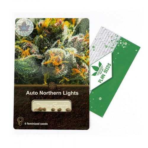 Купить стакан травы Auto Northern Lights