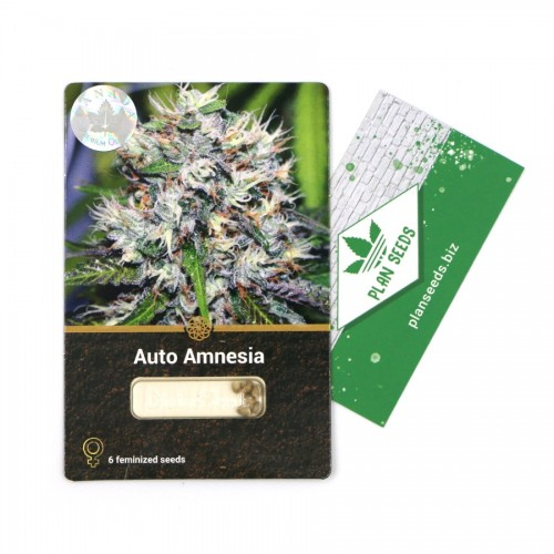 Купить стакан травы Auto Amnesia