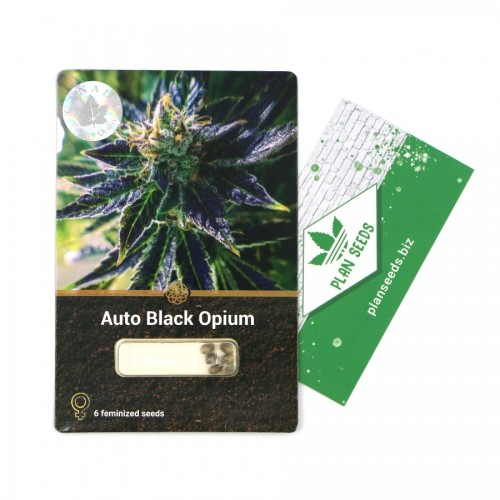 Купить стакан травы Auto Black Opium