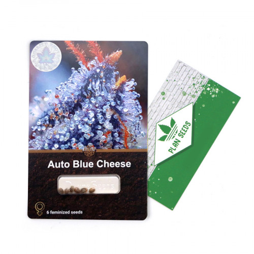 Купить стакан травы Auto Blue Cheese