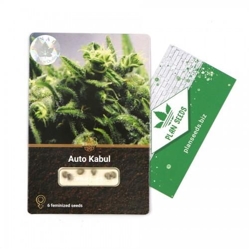 Купить стакан травы Auto Kabul