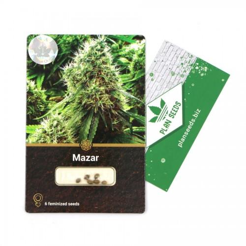 Купить стакан травы Mazar