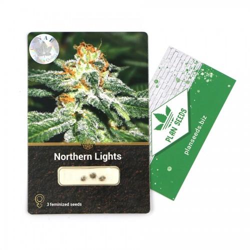Купить стакан травы Northern Lights Divine Seeds