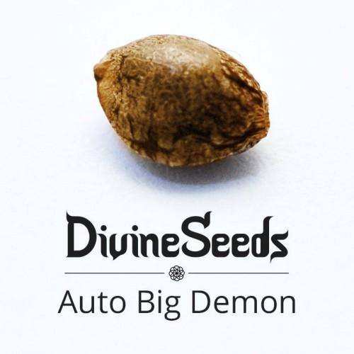 Купить стакан травы Auto Big Demon
