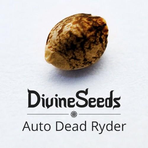 Купить стакан травы Auto Deadryder