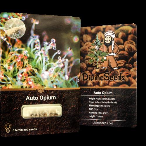 Купить стакан травы Auto Opium