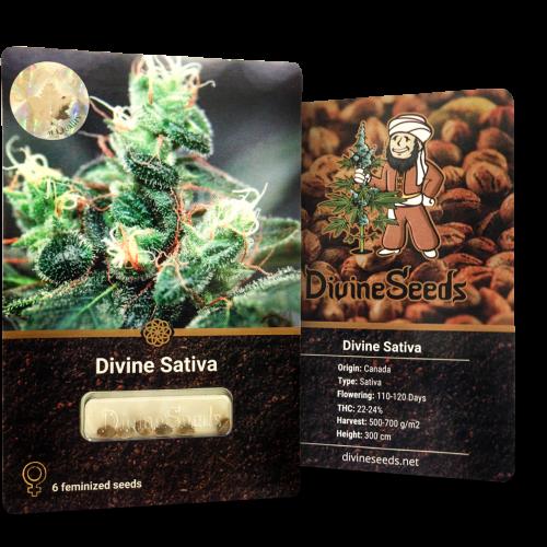 Купить стакан травы Divine Sativa