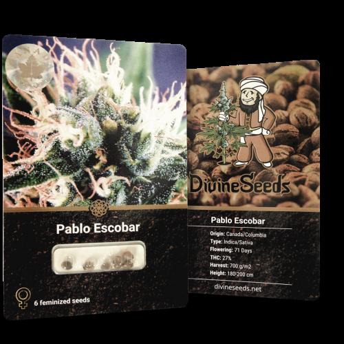 Купить стакан травы Pablo Escobar